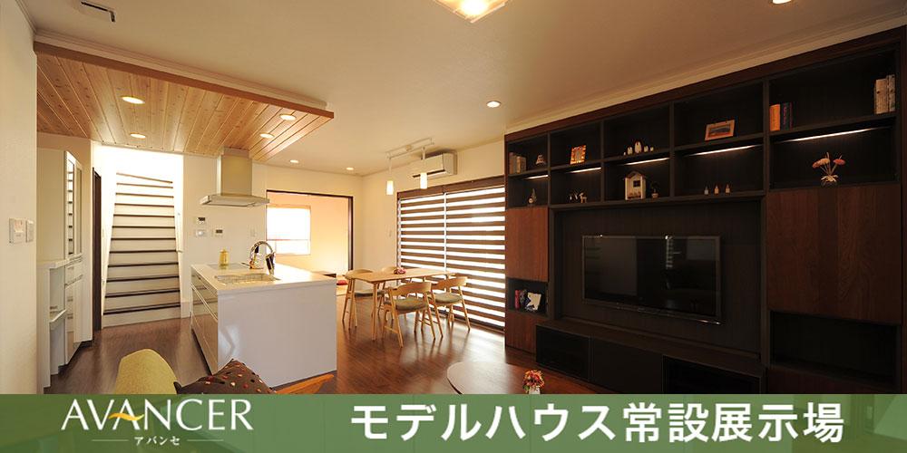model_image01
